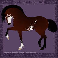 Nordanner Import 1058 by SWC-arpg