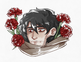 Red Carnation by the-flying-beetle