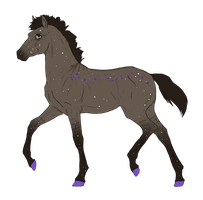 N2988 Padro Foal Design for horses0101 by Mimi-McG