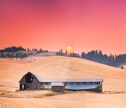 Palouse by little-spacey