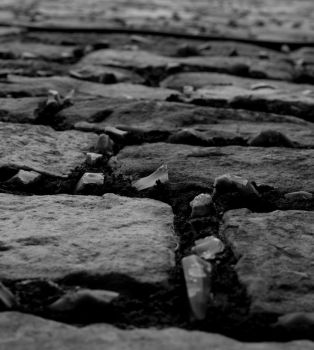 Rocky Road by dadian