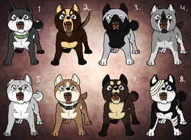 Cheap ginga canine adopts[CLOSED] by SAdoptsS