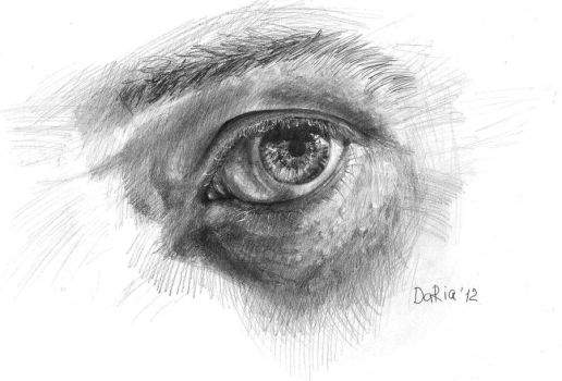 the eye study by DariaGALLERY