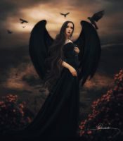 The Lady of Crows by Adriana-Madrid