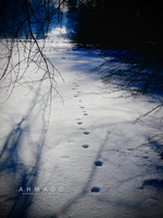 The Ambiguous Steps by CS-01