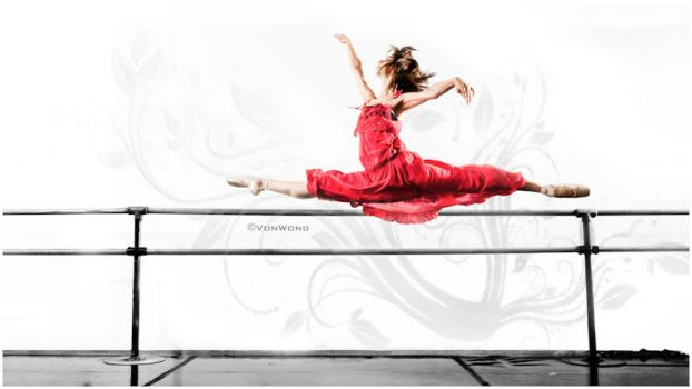 Power grace and form by VonWong