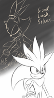Silvaze - Good luck Silver by Zack113