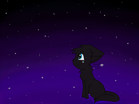 Sad Cat In A Galaxy Of Stars by BambiKittens