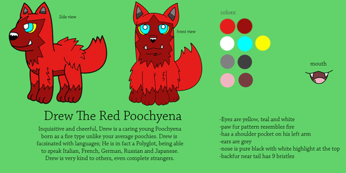Drew The Red Poochyena reference 2016 by DrewTheRedPoochyena