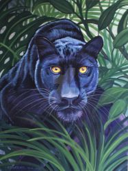 Black Panther Hidden Hunter  by HouseofChabrier