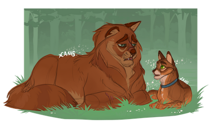 Pinestar and Jake by xCANIS