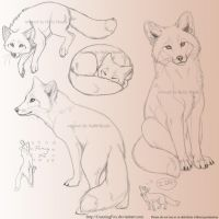 Red fox sketchpage by Bear-hybrid