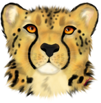 Cheetah by Specklemouth