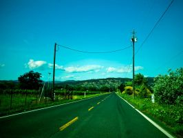 On the Road Again by d-elner