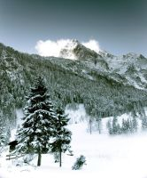 The Alps winter 2007 by mutrus