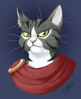 Turbo, the Khajiit by GalooGameLady