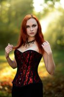 Gothic in Red [5] by Luin-Tinuviel
