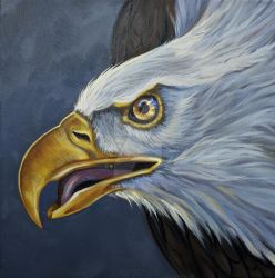 Eagle Strong and Vigilant  by HouseofChabrier