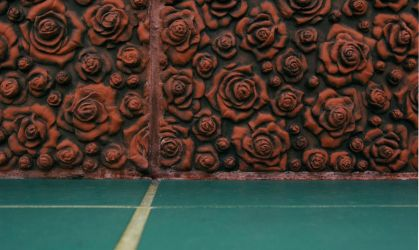 Texture of roses by doultonro