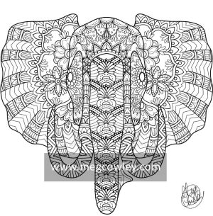 African Bush Elephant (The Exotic Colouring Book)