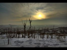 Foggy sunset _HDR_ by WildSammy