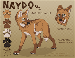 Naydo Character Ref (SOLD) by WolvenBird