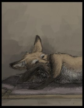 Fox on a Violet Mat by Zethelius