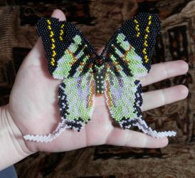 Graphium by Chapka6131