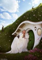 The hobbit house by MaliciaRoseNoire