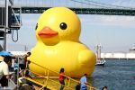 Giant Rubber Duck by Sirevil