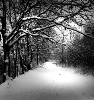 Winter by Balthezzar