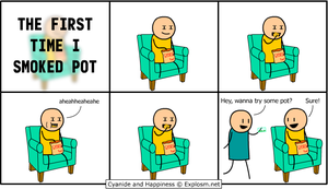 The First Time I Smoked Pot by MattMelvin