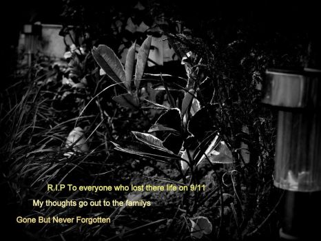 Gone But Never Forgotten (9/11 Remembrance) by SteampunkerGo
