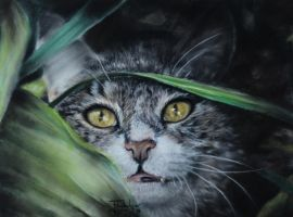 Pastel Drawing 'I iz hidden, so you can't find mi' by lluvia-estival