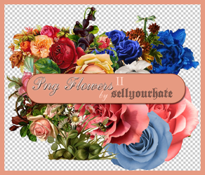 PNG's: Flowers II by sellyourhate