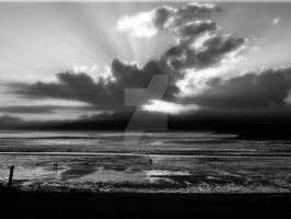 Fundy Sunset Black and White by zaphotonista