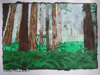 Redwood forest in the rain by Justyn16