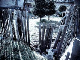 the old fence by piorun