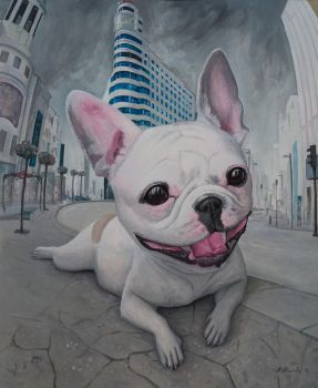A French (bulldog) in Madrid by borda