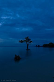 blue calm by wookiegraphy