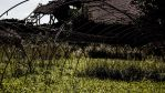 Devastated and Abandoned Public Farm by silentmemoria