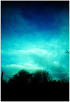 Lomo Nr.4 - Crossed Sky by Stormblast