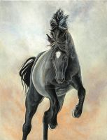 Storm by GeorgiaHorsepainter