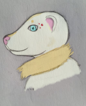 Simple Ferret headshot by gamerd