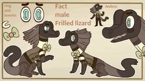 Fact new ref by lizzardblackrose