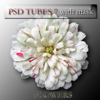 psd flower 7 with mask by feniksas4