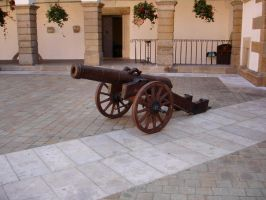 Cannon by Comacold-stock