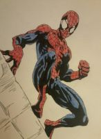 Ultimate Spider-Man Colored by DeVianThaI
