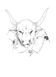 The Taurus by pachryso