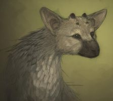 Trico by Vamtaro